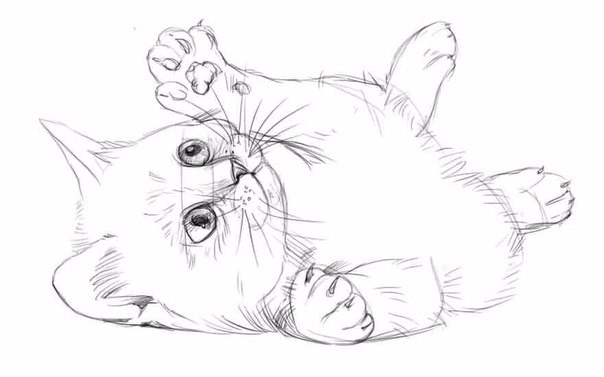Рисуем котёнка карандашом