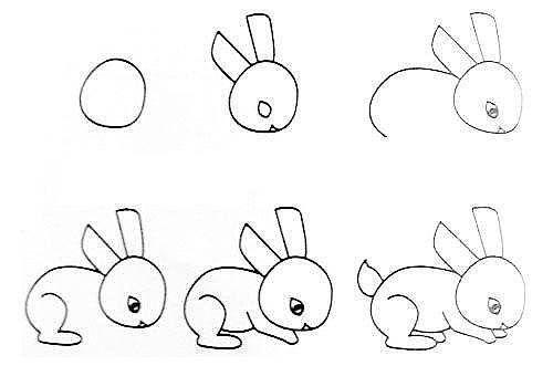 10 примеров, как нарисовать зверей поэтапно 1
